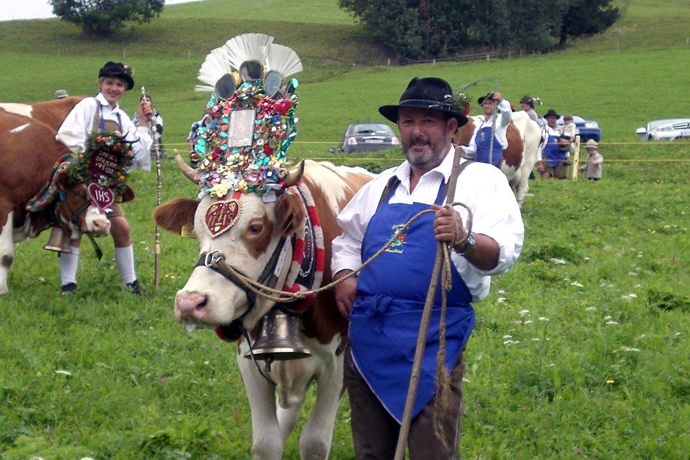 Ritorno a valle del bestiame